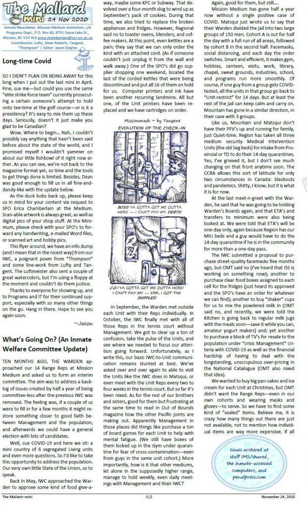 Read more about the article The Mallard (mini) November 2020