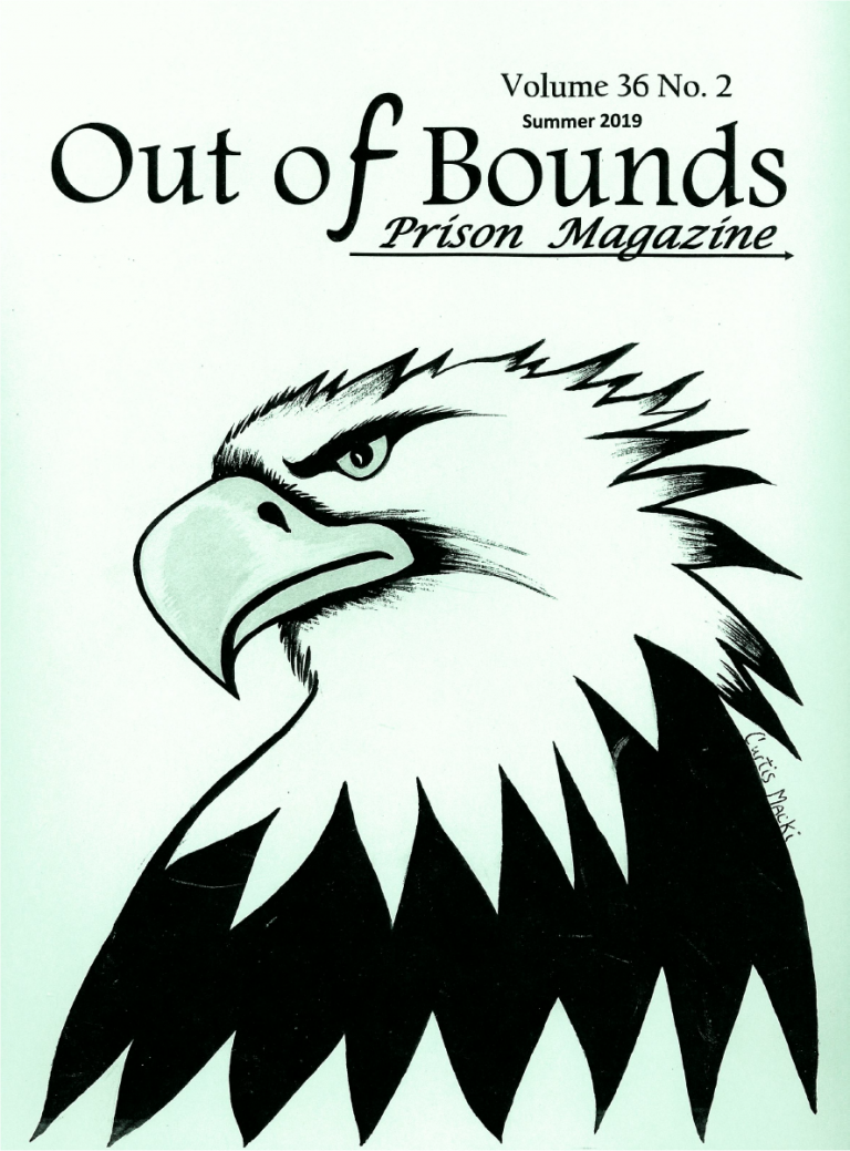Read more about the article Out of Bounds v36(2)