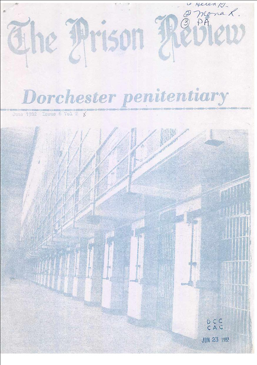 Read more about the article The Prison Review
