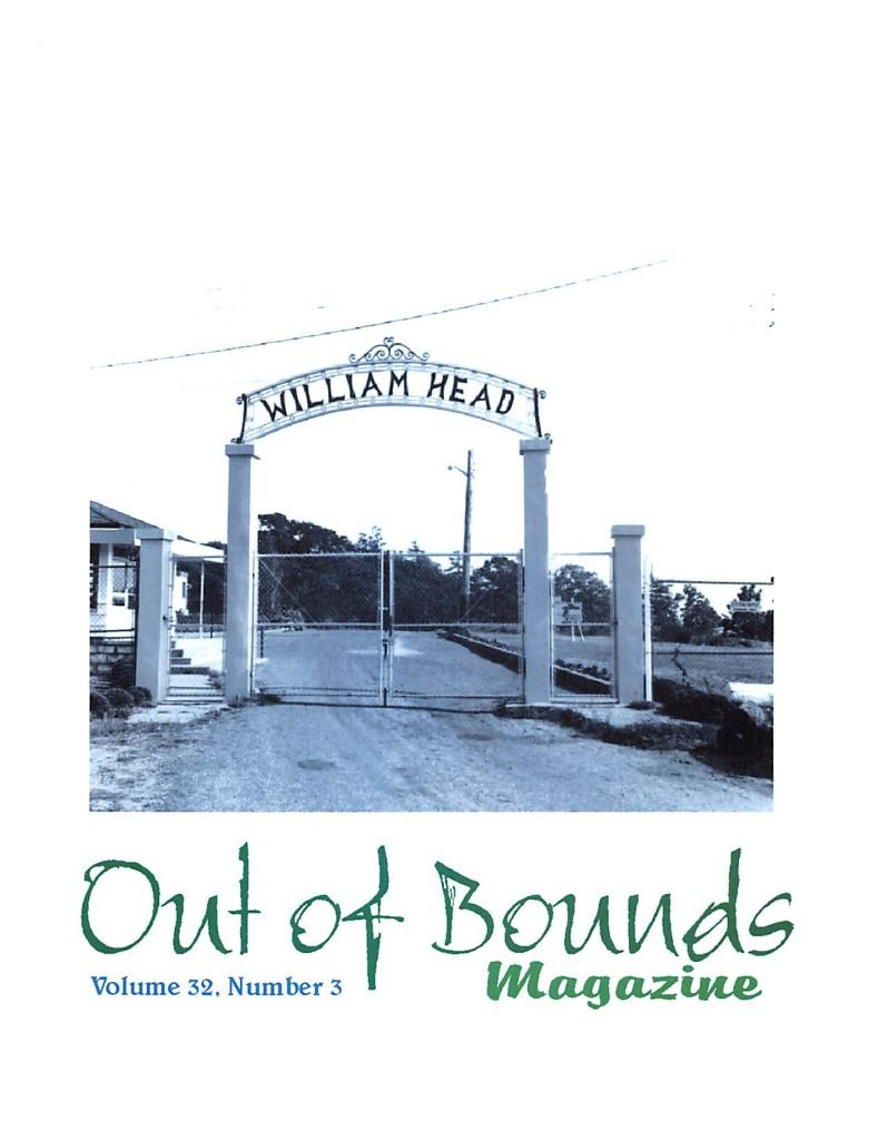Read more about the article Out of Bounds v32(3)