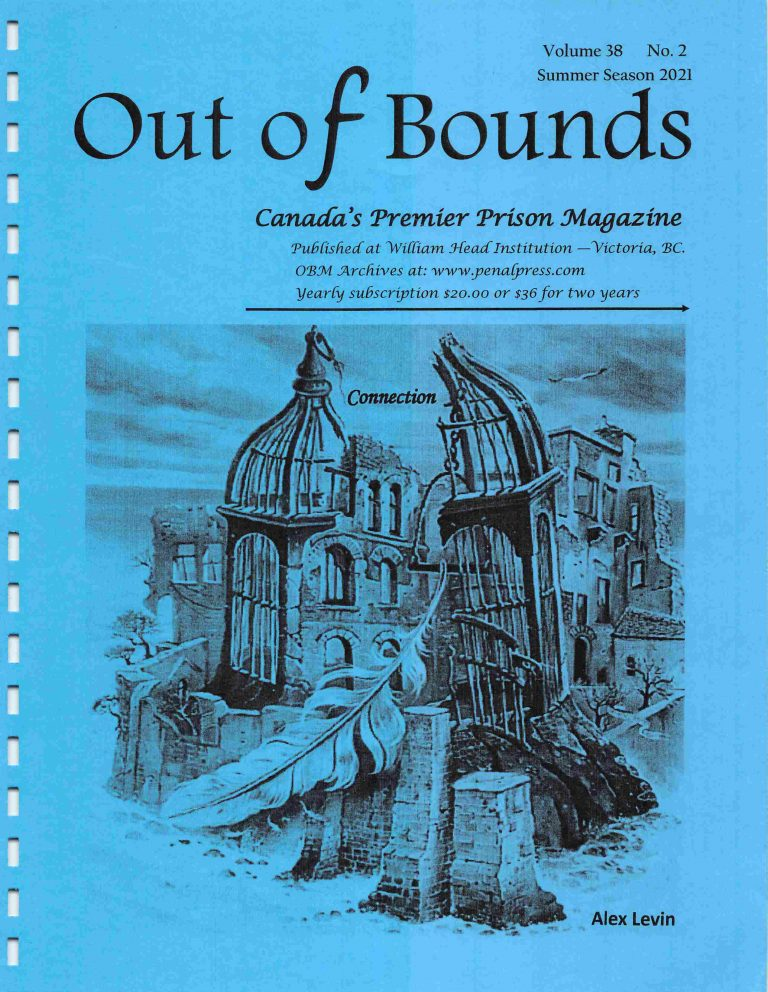Read more about the article Out of Bounds Summer v38(2)