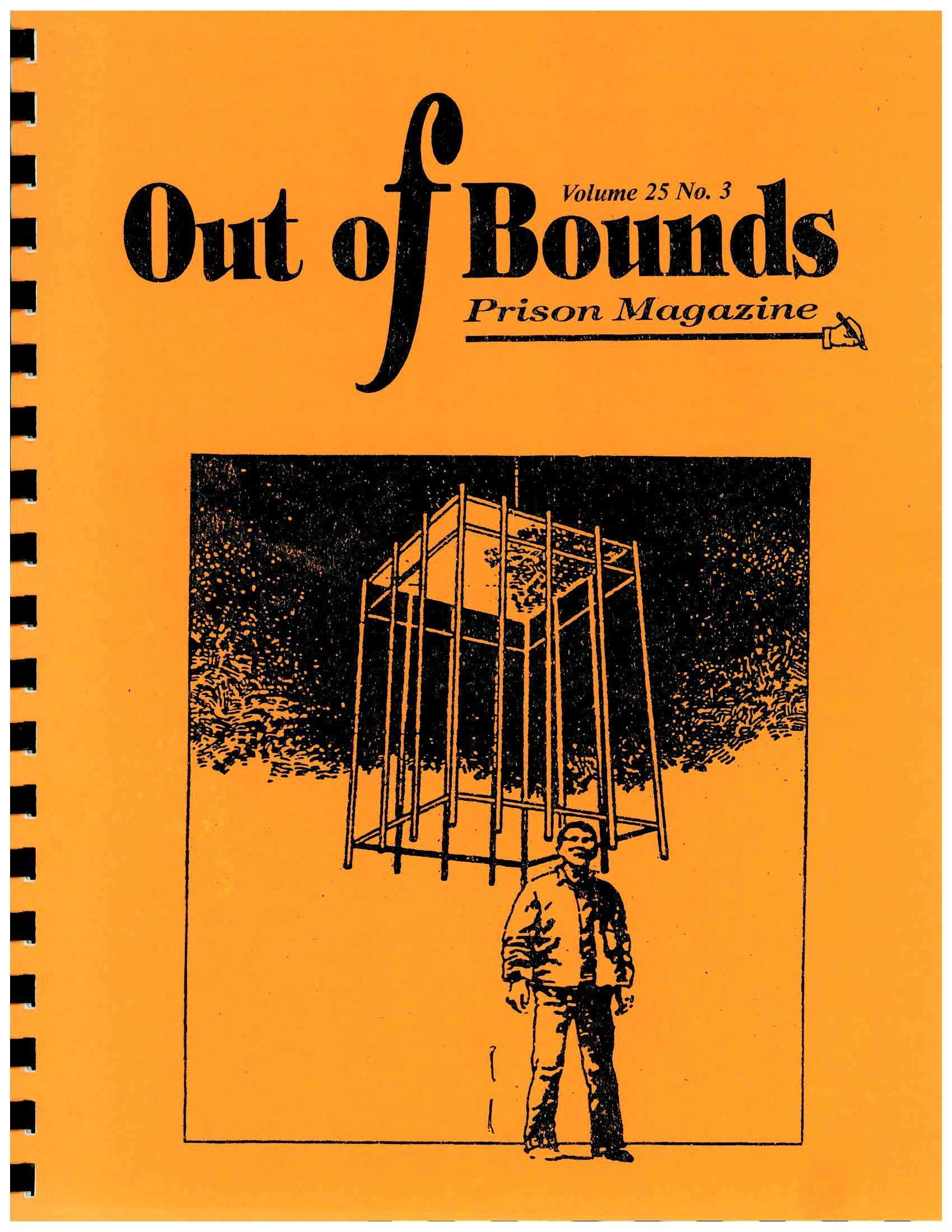Read more about the article Out of Bounds V25(3)